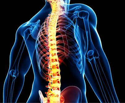 http://www.pereirafilho.com/wp-content/uploads/procedimentos-neurocirurgia-coluna-vertebral-2.png