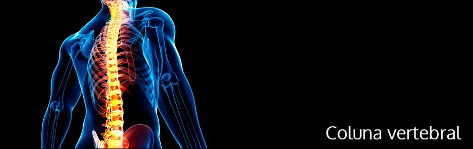procedimentos-neurocirurgia-coluna-vertebral
