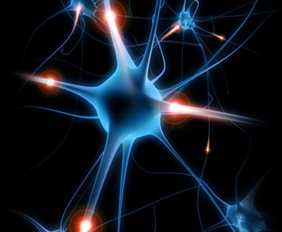 [Imagem: procedimentos-neurocirurgia-nervos-perifericos-2.png]